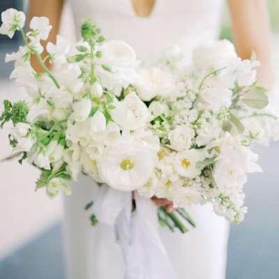 مسكة عروس بيضاء