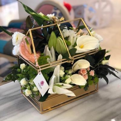 Bouvardia Flowers & Wedding Planner