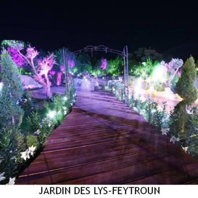 Jardin Des Lys