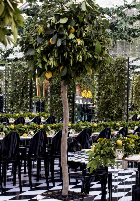 A Lemon Garden Night by My Event Design