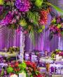 Alissar Weddings 2