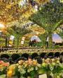 حفل زفاف بثيم جنة الأزهار من تنظيم باز لتنظيم الاعراس
