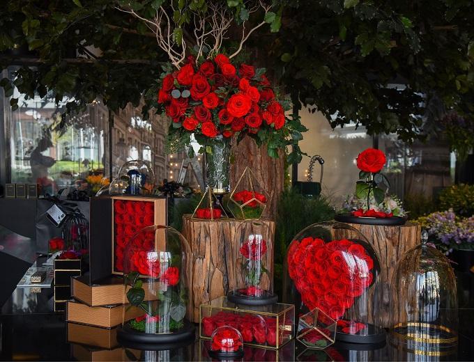 Forever Rose - Abu Dhabi