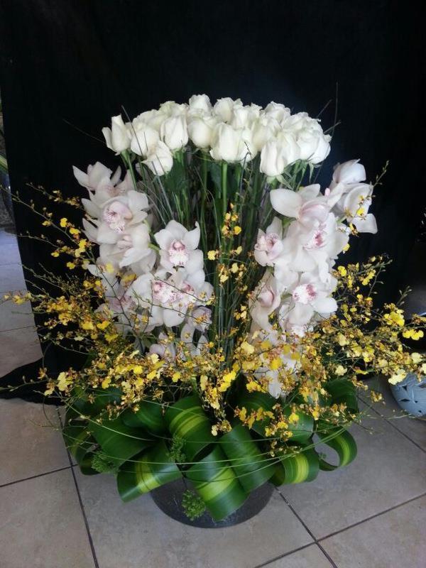 جلوريوس للزهور - أبو ظبي