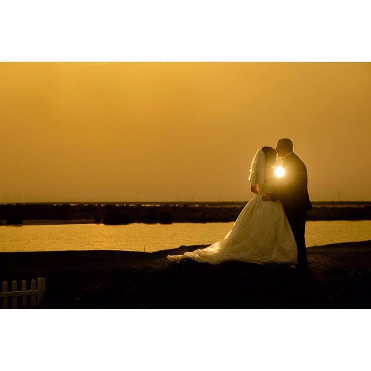 Rodford Photography - Abu Dhabi