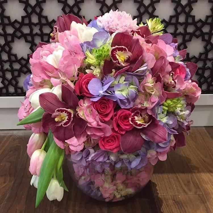 زهور بلاك تيوليب - الشارقة