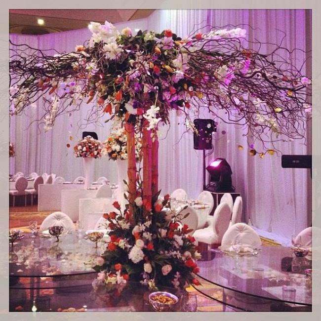 Al Murjan Events Planner - Qatar