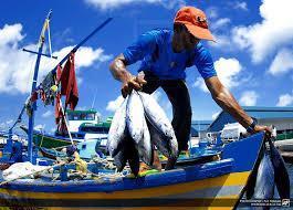 سوق سمك ماليه