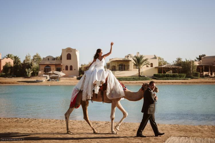 المصور محمد طه - مصر