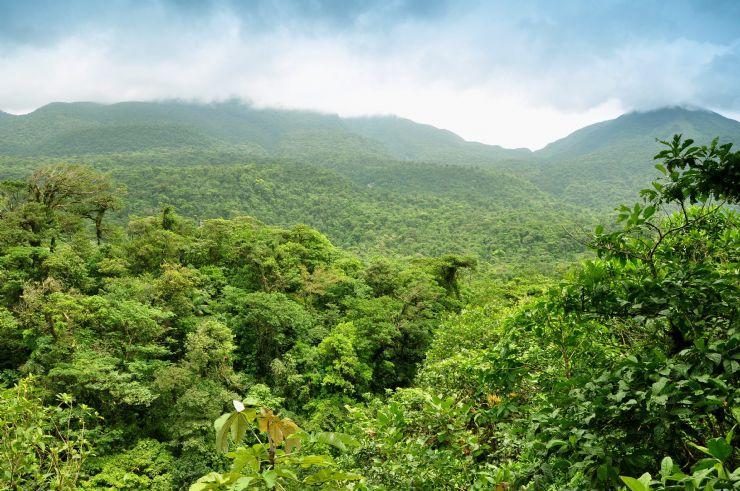 حديقة بروليوكاريو الوطنية
