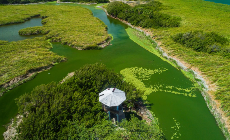 الطبيعة في أروبا